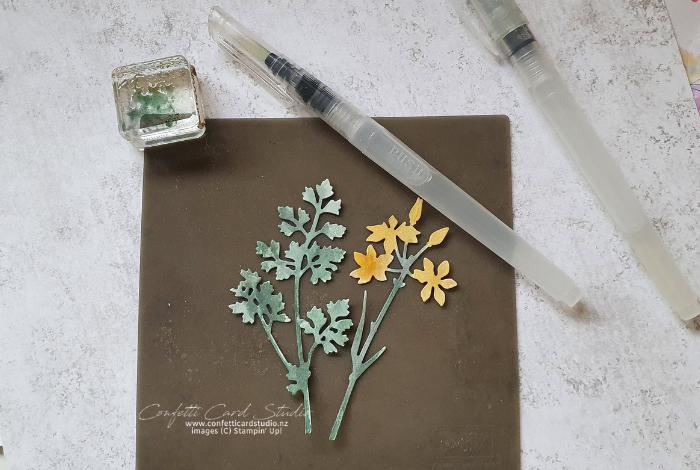 Quiet Meadow Wild Flowers